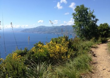 Escursioni Liguria